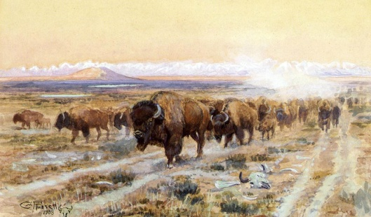 The_Bison_Trail_1908