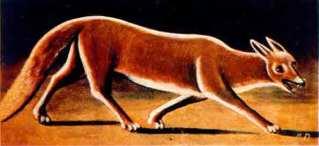 Niko_Pirosmani._«Fox»